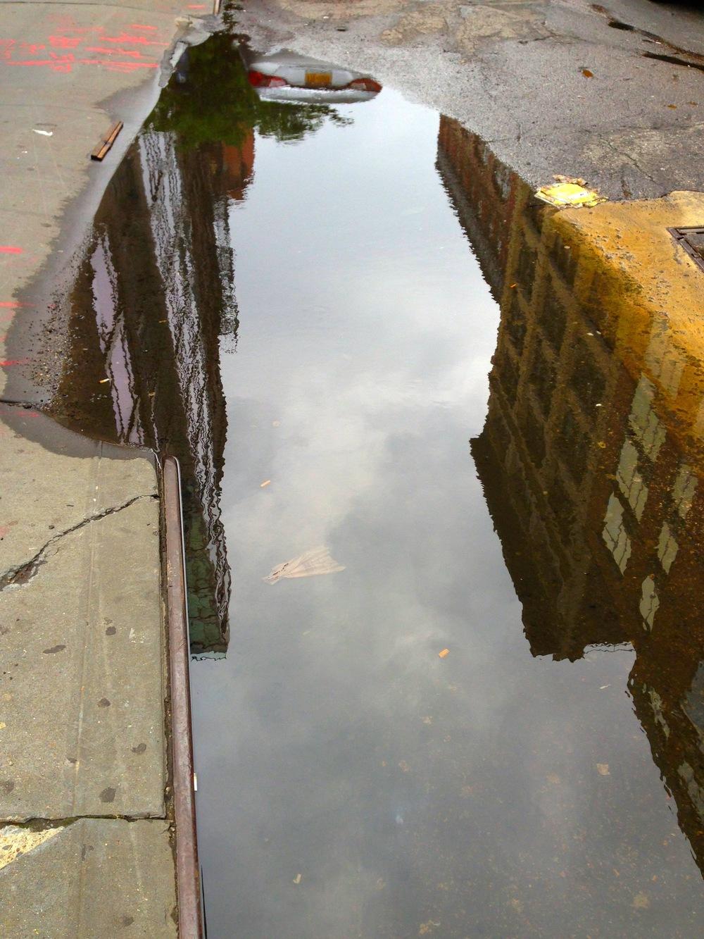 puddle 1.JPG
