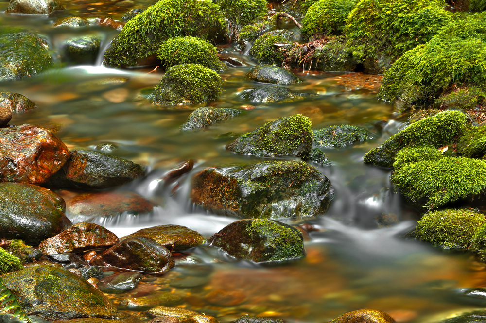 smallwaterfall_hdr-Edit.jpg