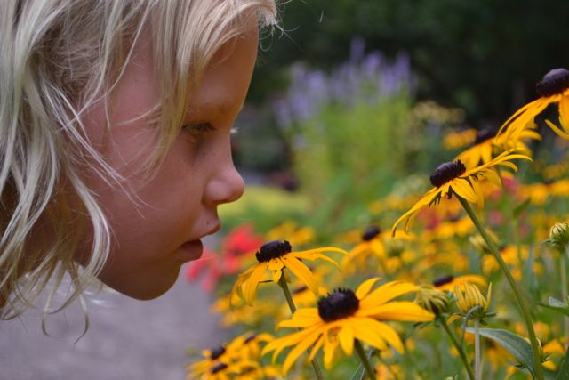 Girl-Smelling-Black-Eyed-Susan.jpg