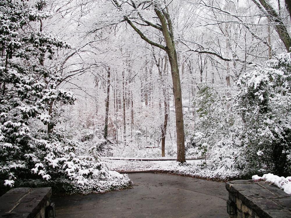 2014 Snowstorm 001.JPG