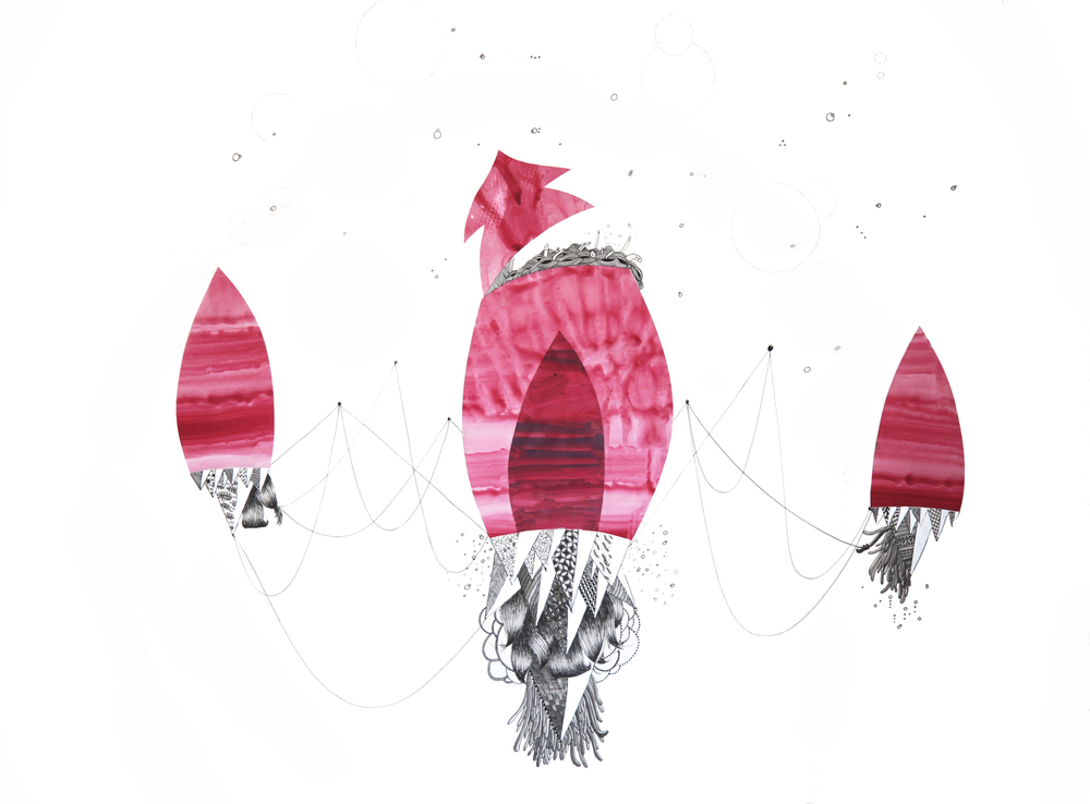 squid+final.jpg