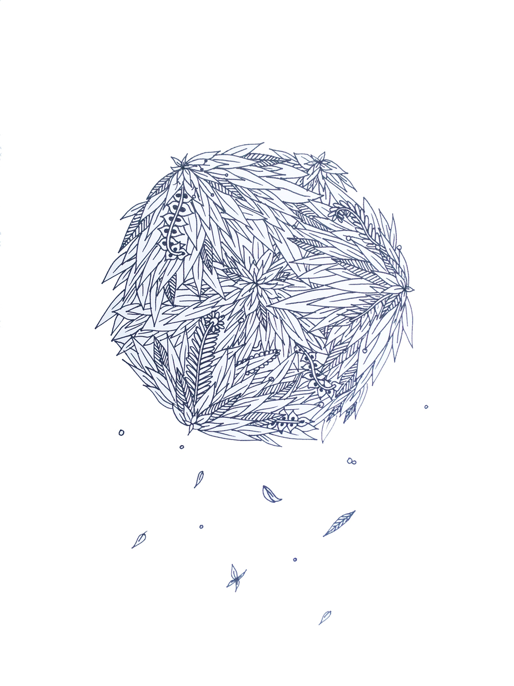 Ball of Fall.jpg