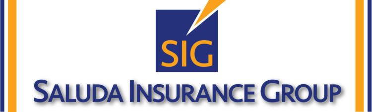 Saluda Insurance Group LLC