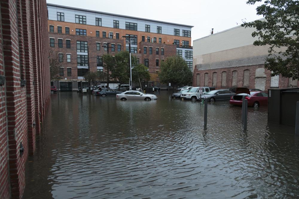 Sandy-04.jpg