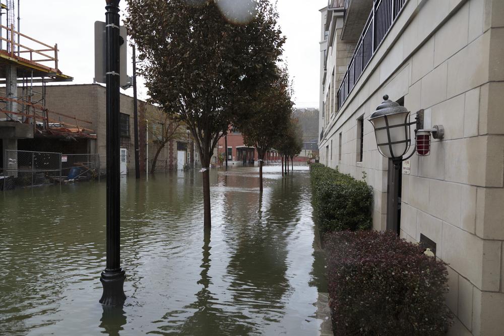 Sandy-12.jpg