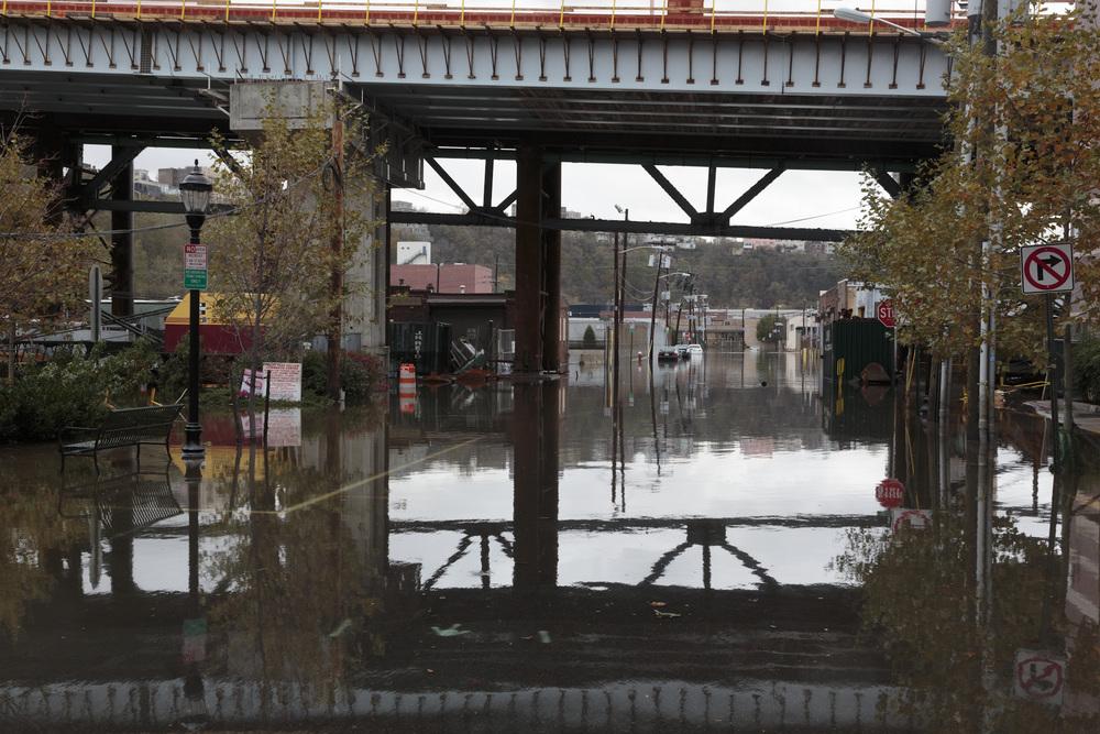 Sandy-16.jpg