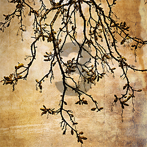 tree-3n.jpg