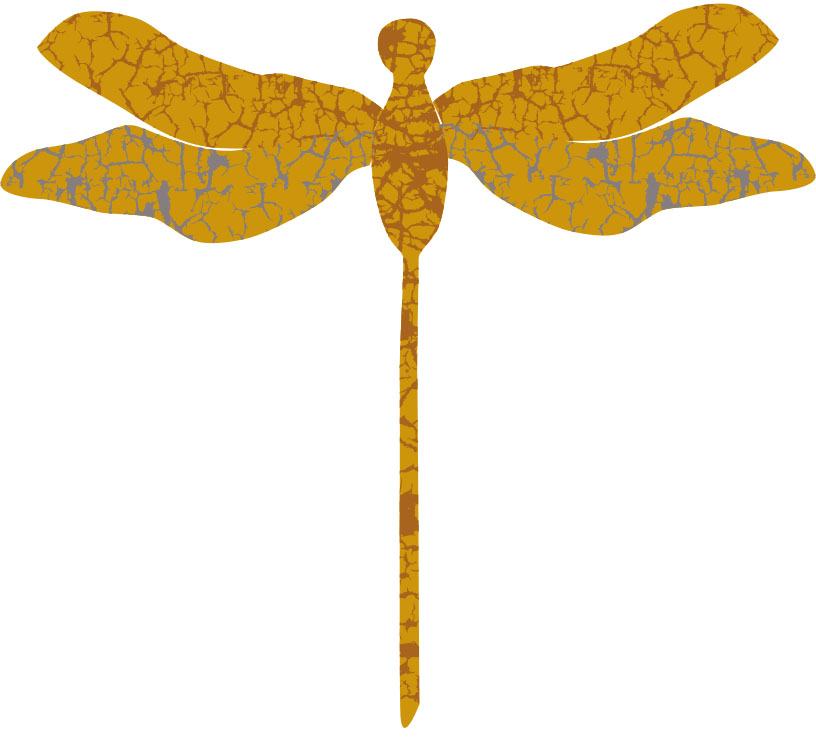 Gold Dragonfly.jpg