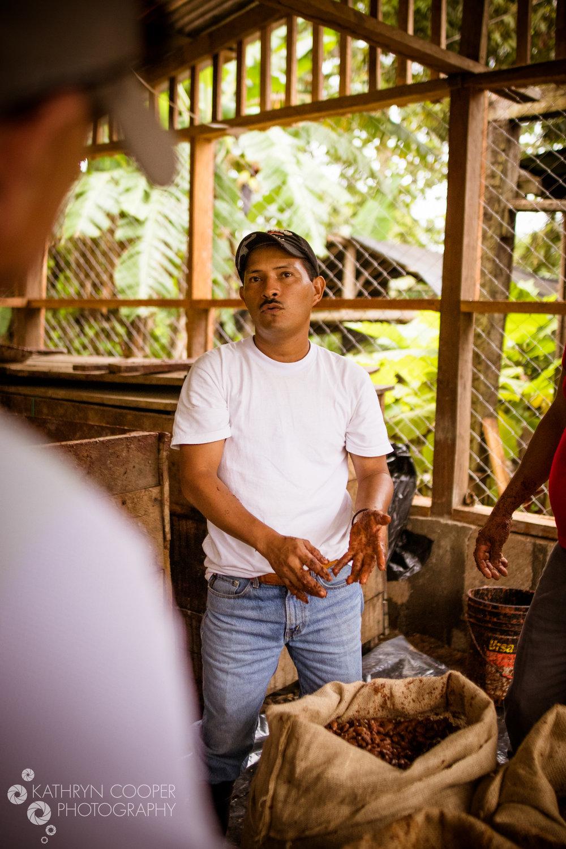 Enliven Cacao ferment - (2)-2.jpg