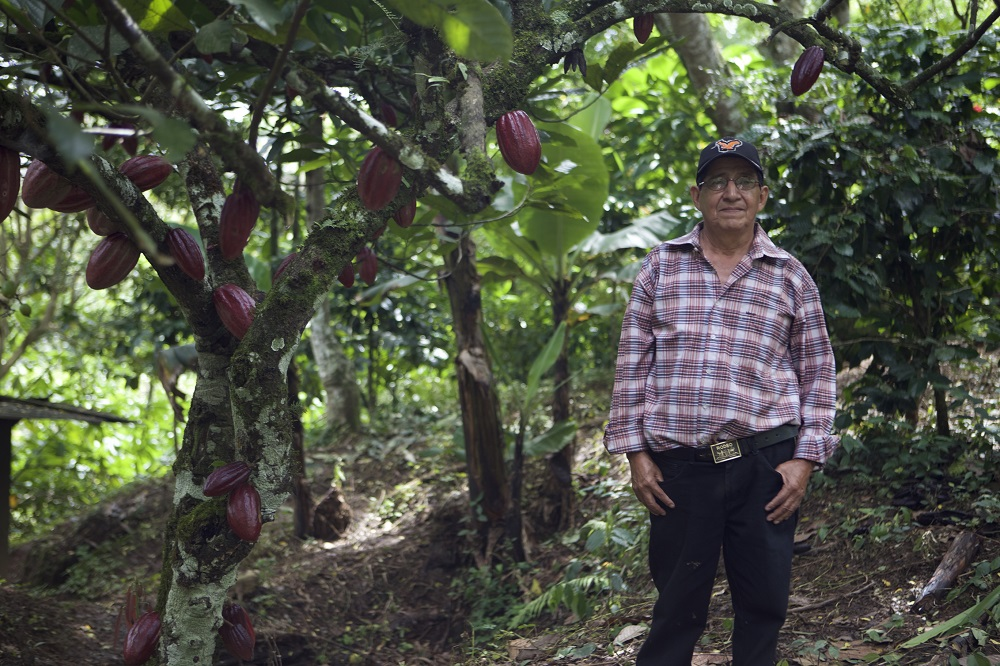 "We want to be different, socially just, and fair to the cacao farmers. We support Direct Trade and Fair Trade principles. We insure the quality of our chocolate by monitoring and testing from farmer to chocolate bar. Tabal means ""relationship"" in the Mayan language. - LEARN MORE"
