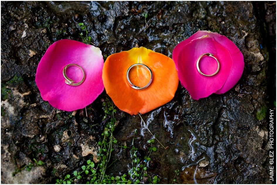 Anillos de matrimonio sobre pétalos de rosa.