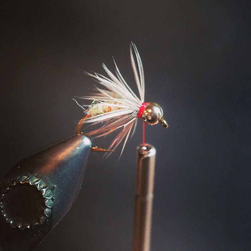 make two or three turns of hackle, tie off then whip finish off while forming a small red collar. there is no limit to color combos but this one works really well. east and west, spring creeks, tail waters and freestones. have fun with it.