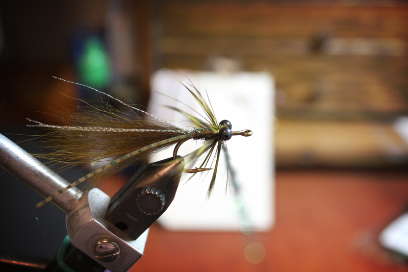 twist on a small amount of peacock ice dub, make one wrap behind the eyes and then form a neat head around the eyes and end with your thread right behind the hook eye.