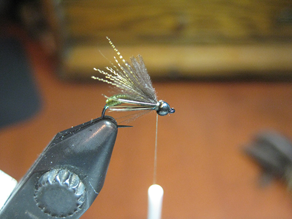 tie in some soft hackle. it's hard to deny the perfection of a hungarian partridge but lately I've been using the tips of pheasant feathers from low on a roosters back near the tail. i tie equal clumps on both sides.