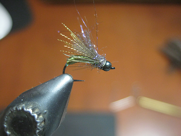 tie in a very sparse clump of ice dub by the middle and fold back over the cdc. then dub a loose collar. tie off and rough the fly up with a toothbrush.