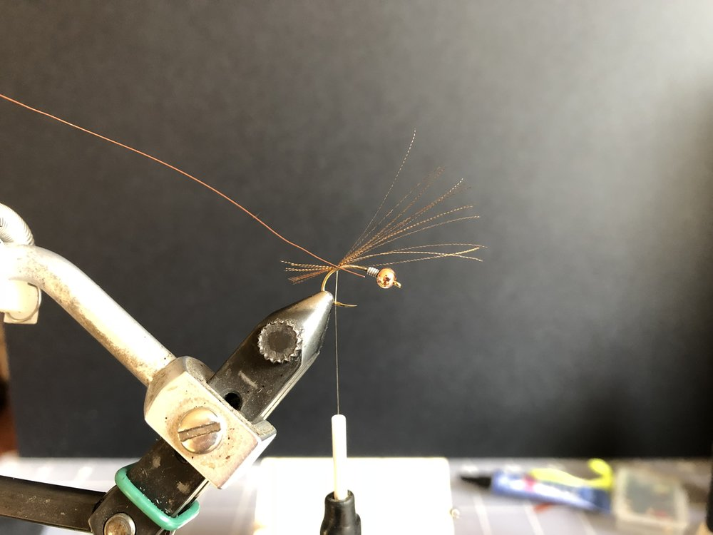 add in a piece of small brown ultra wire. leave your tag end the same length as the abdomen of your fly.