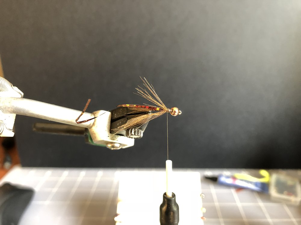 pull the tag end back along the other side. this is adds an interesting subtle flash and can be effective if you are imitating gills. try to build some into you stoneflies sometime.
