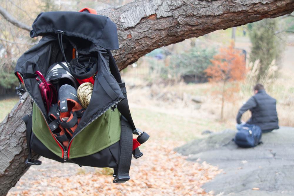 AS_hanging in tree.jpg