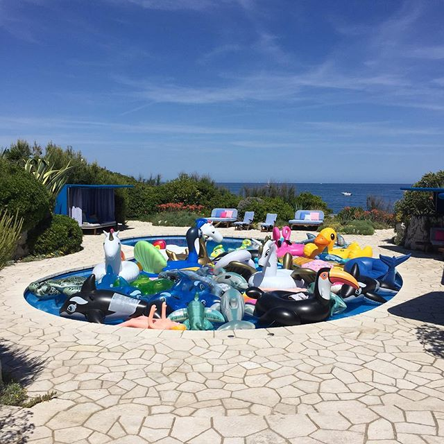 Pools don't get much better than this 🦈🐠🍩🐋🐙🦄🍕🐧🐢🐤🦐🐬🐊🦋🐴