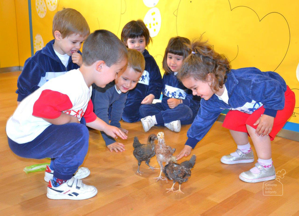 La_Caseta_dels_infants_gallines_02.jpg