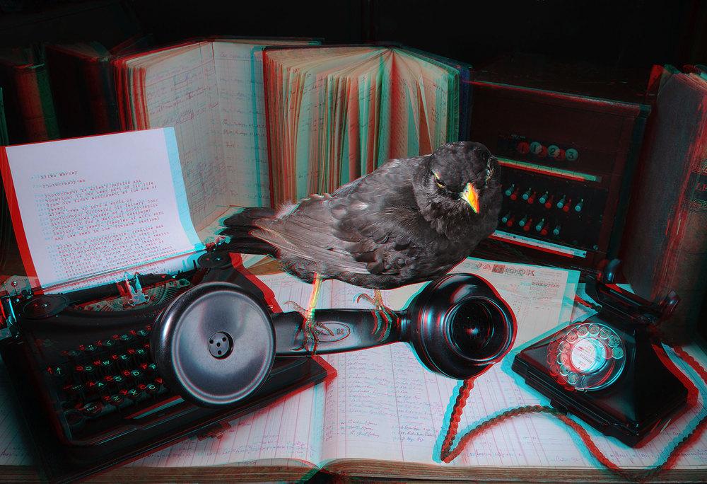 001-3D.jpg
