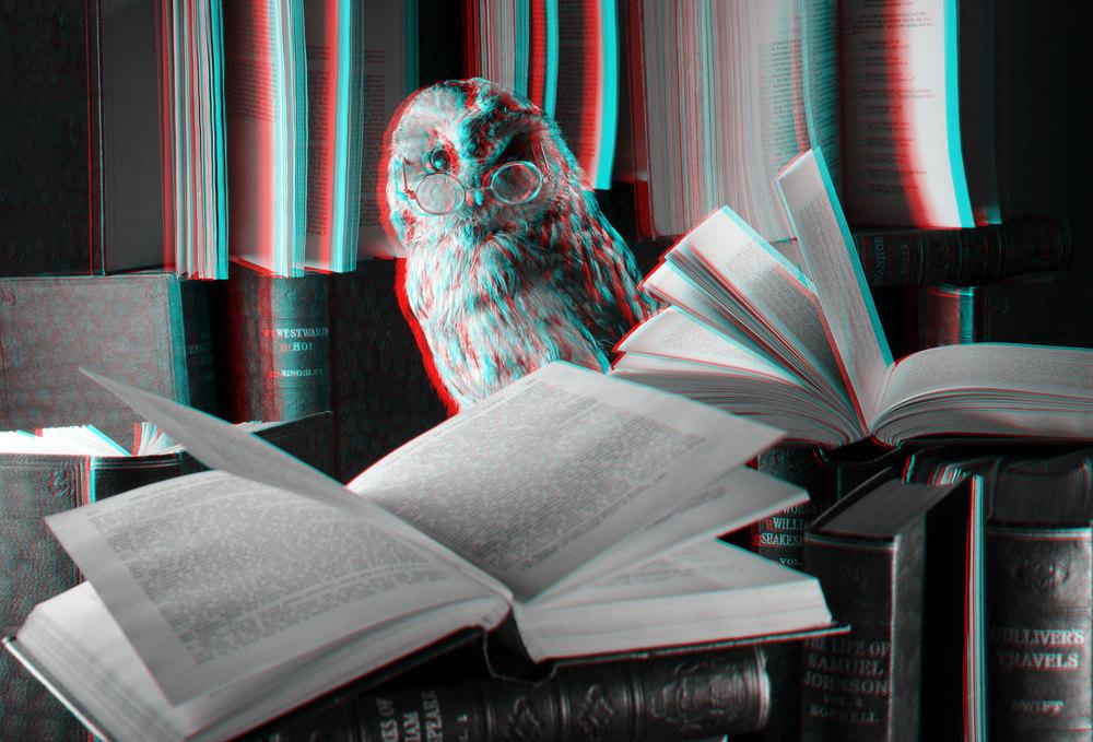 004-3D.jpg