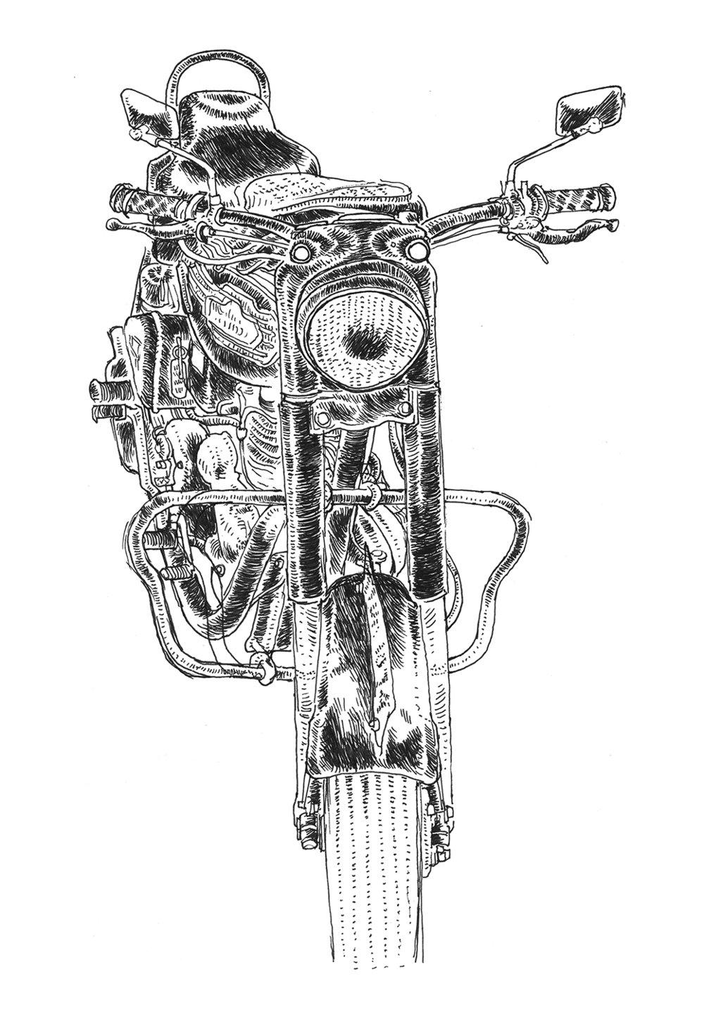 davidm-bike-1.jpg