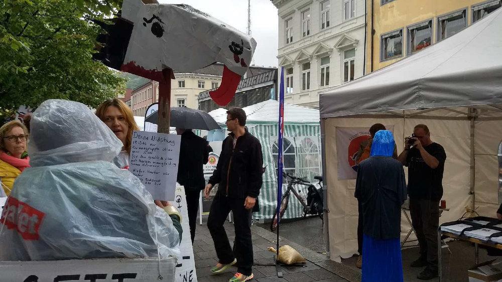Ottar reiste nidstang mot SIAN under Arendalsuka 2017. Foto: Christine Rødal.