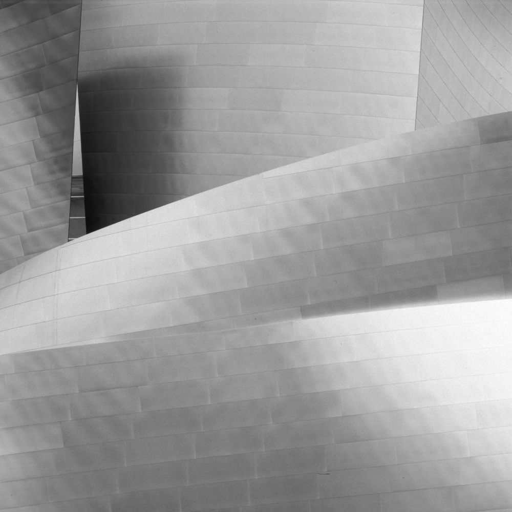 Disney_Hall_Detail_01_BW_Raw_16Bit_Cropped.jpg