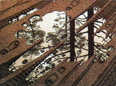McC. Escher,  Puddle , 1952 ©1990 M.C. Escher c/o Cordon Art–Baarn–Holland