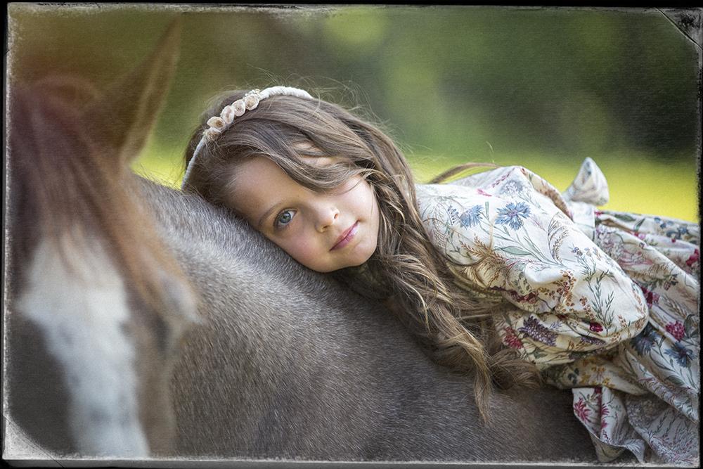 horse sm.jpg