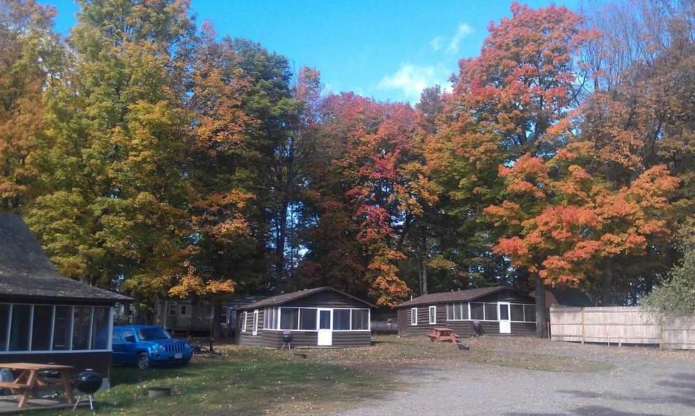 fall cabins.jpg