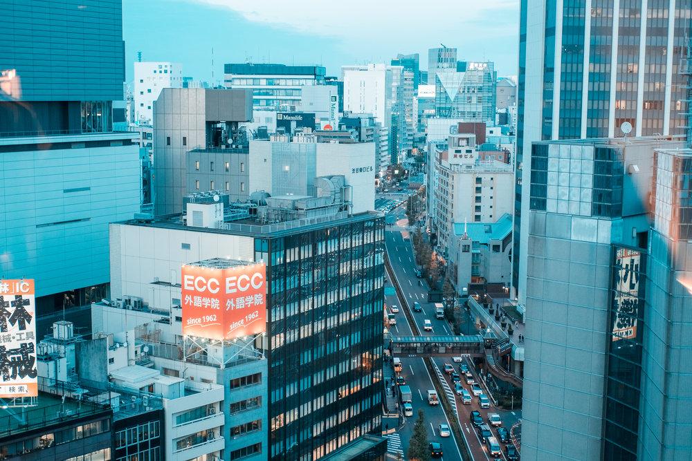 Tokyo_Nov_2018_AdamDillon_DSCF1227.jpg