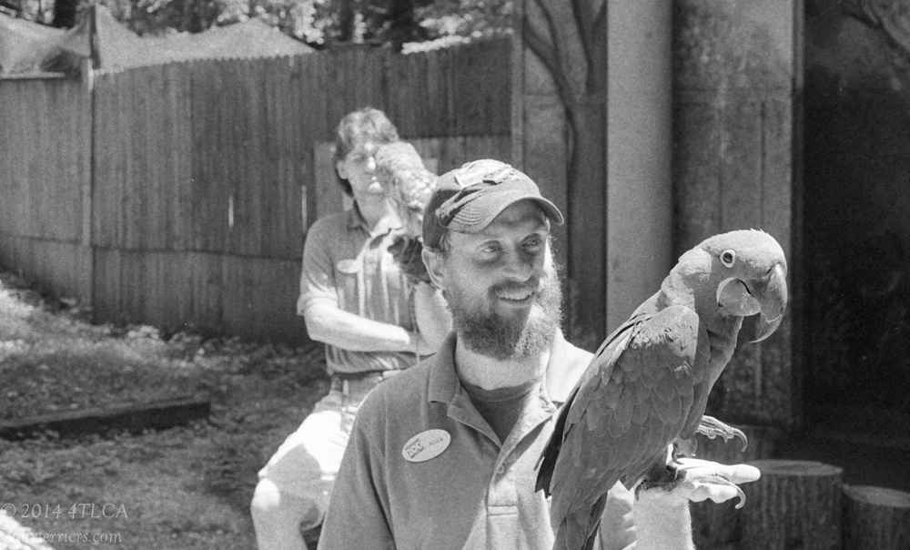 Animal Supervisors - Knoxville Zoo