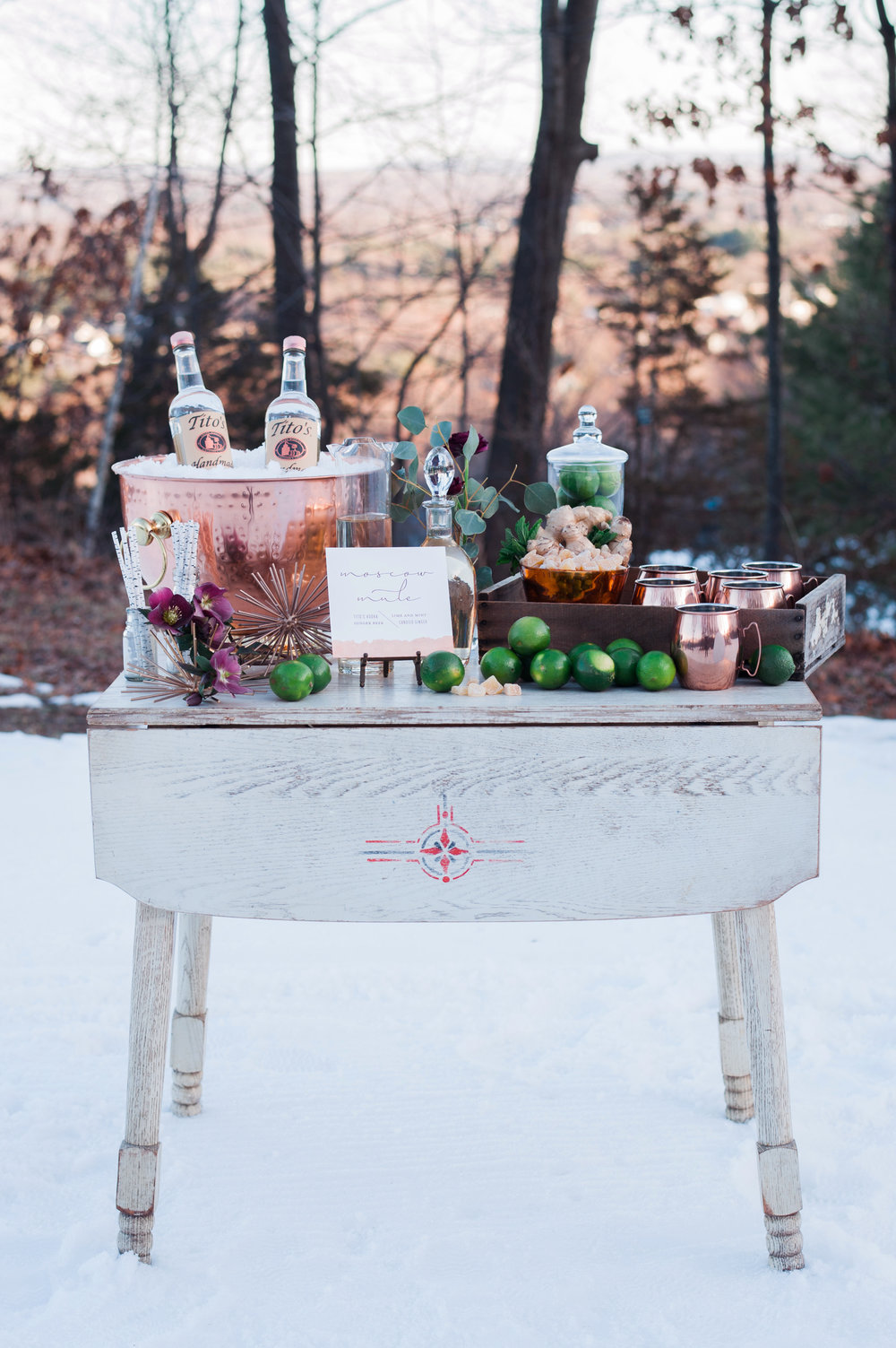 SKI Winter themed wedding ideas copper themed_006.jpg