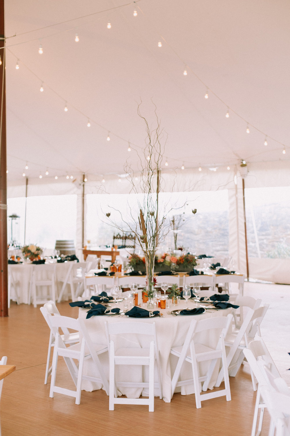 Hudson Valley Tented Wedding Red Maple Vineyard NY 1010.jpg