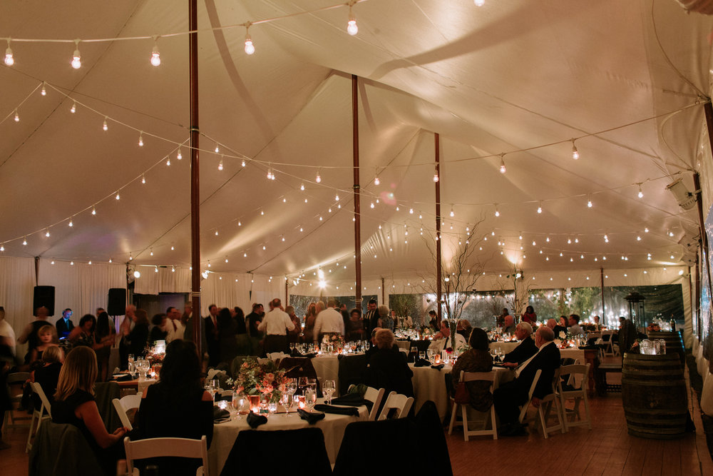 Hudson Valley Tented Wedding Red Maple Vineyard NY 1030.jpg