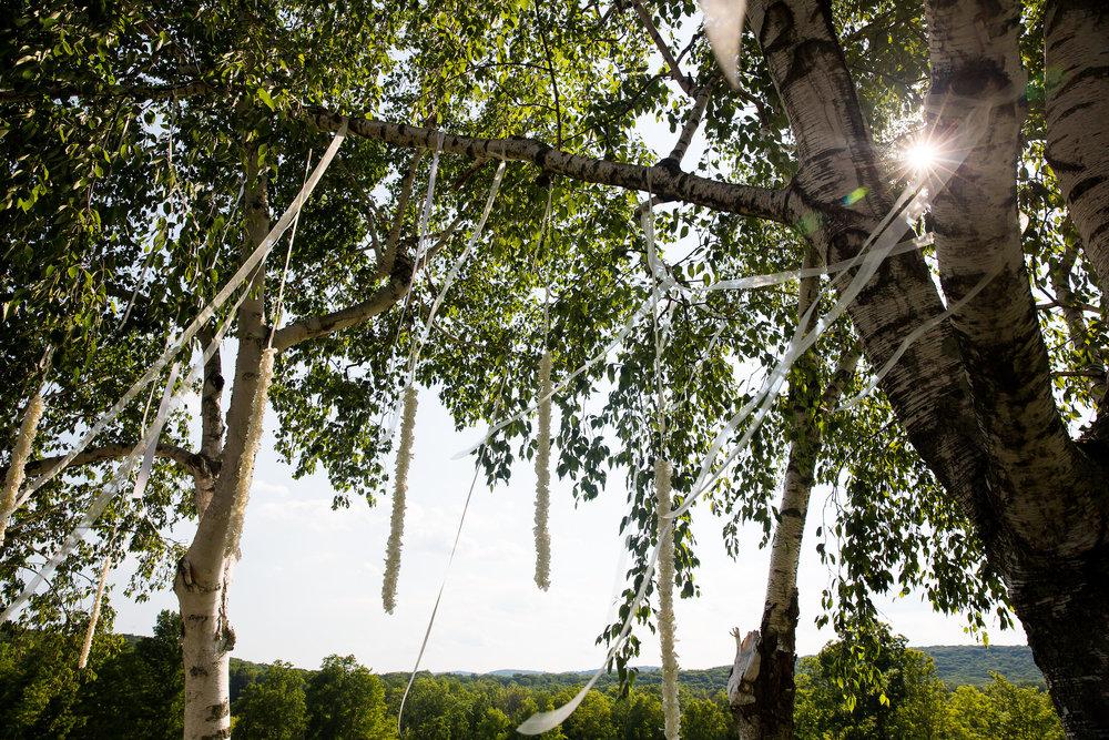 Black Tie Tented Wedding - Connecticut Wedding Planner_001.jpg