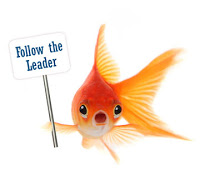 follow the leader fish3.jpg