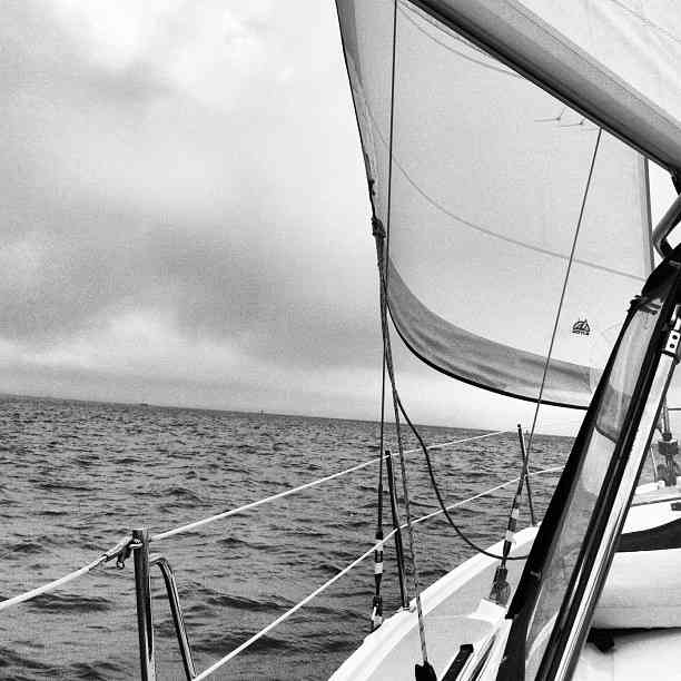 Sailboat_Black_and-White_SanFrancisco_Bay.jpg