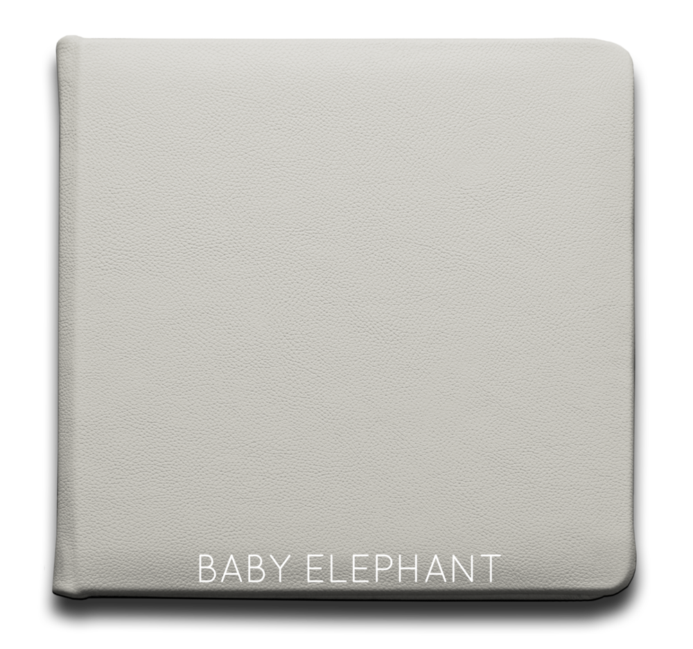 Baby Elephant - Leather