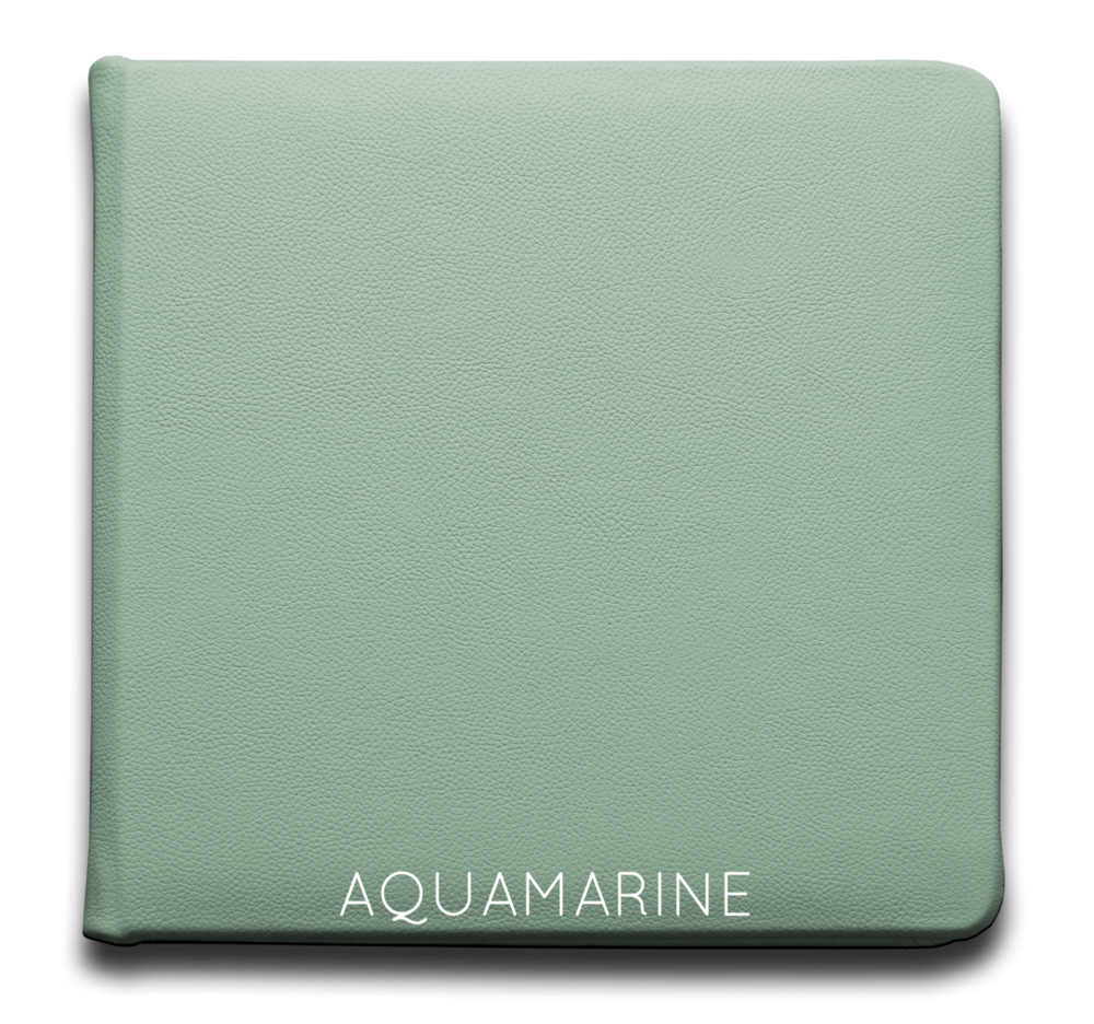 Aquamarine - Leather