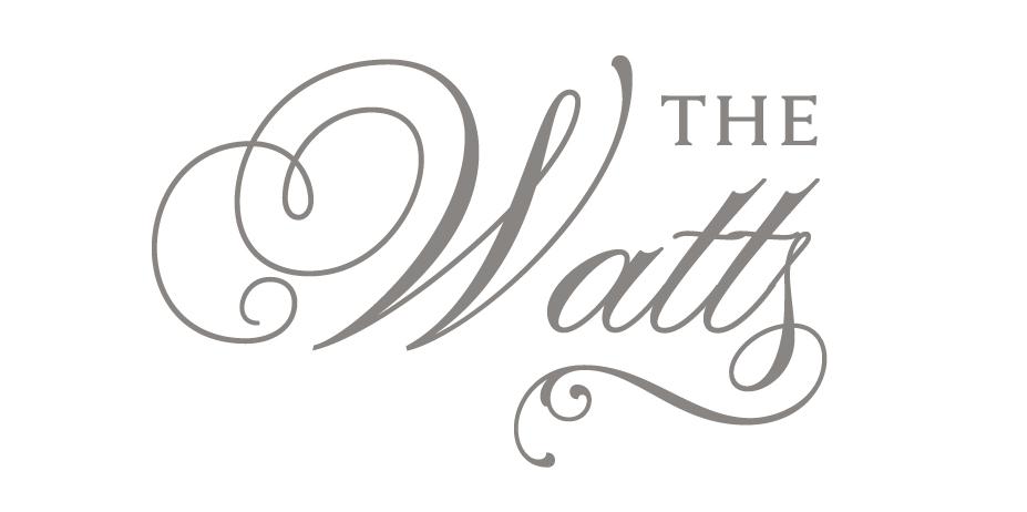 Ariana & Brian Watts, Silver Feather Studios, a North Carolina Wedding photo & video company.
