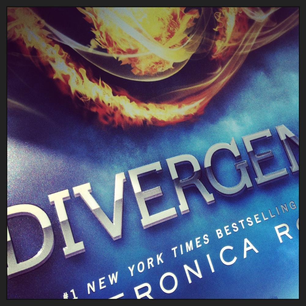 divergent-book-series-0603.JPG