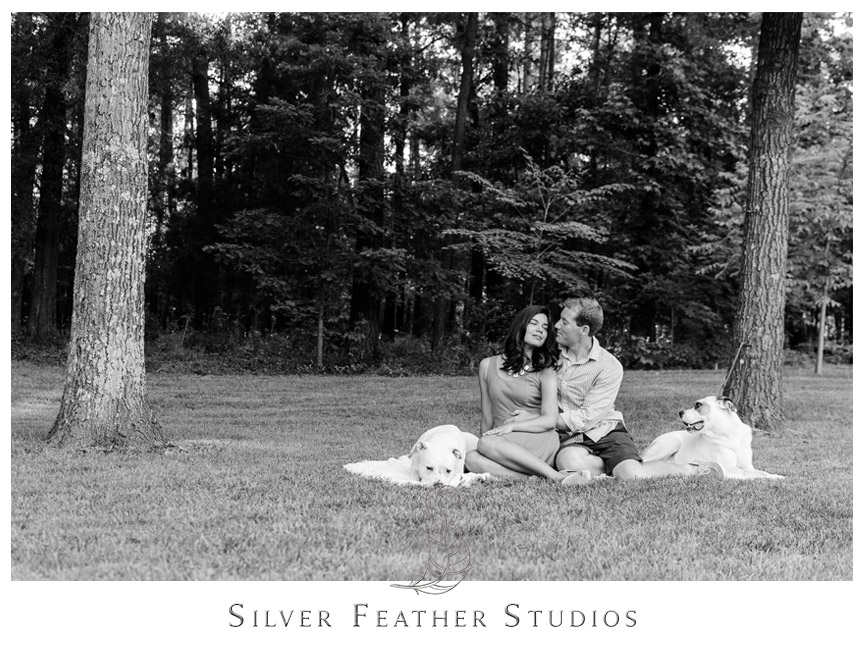 Engaged couple pose with their two sweet dogs in Chapel Hill.