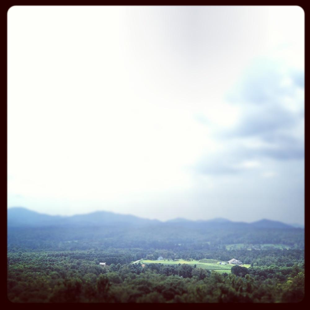 mountain-view-charlottesville-0915.JPG