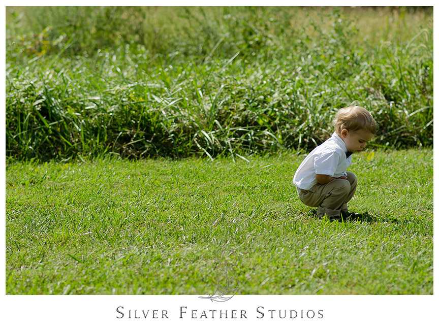 Ringbearer plays in the green grass on a sunny day at Starlight Meadow in Burlington.  © Silver Feather Studios
