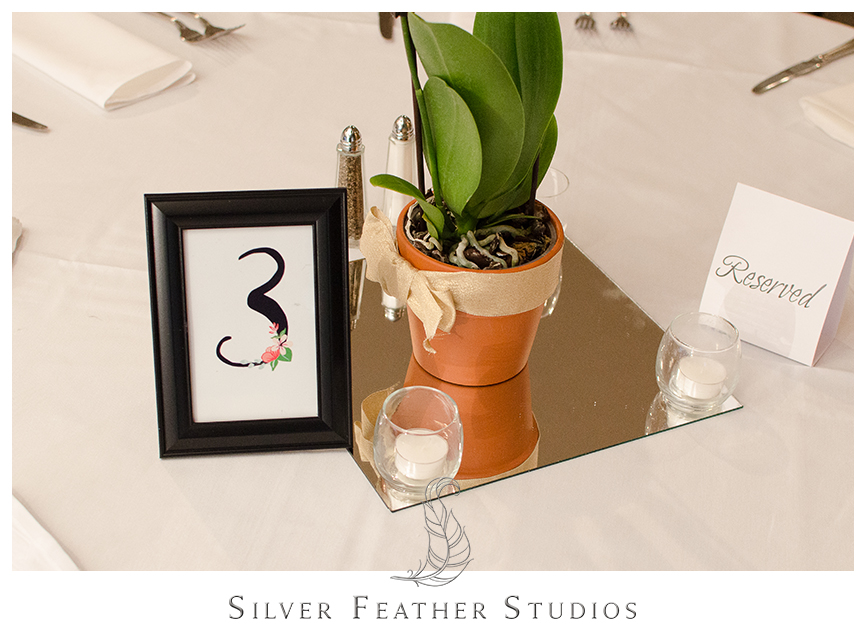 Bryan Park Golf Center Wedding reception featuring potted orchid centerpieces with candles. © Silver Feather Studios, Wedding Photography in Greensboro, North Carolina.