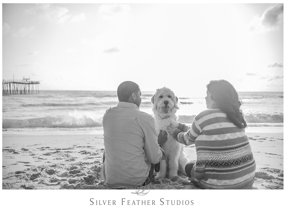 Kim and Wally bring their dog Lincoln to roam the Outer Bank beaches during their couples session.