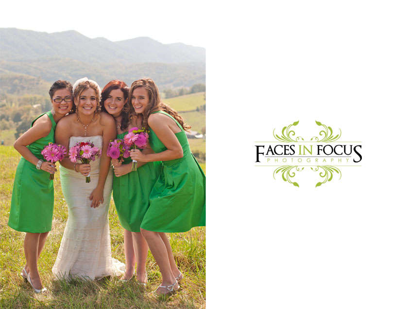 Bridesmaids pose in their green David's Bridal gowns.